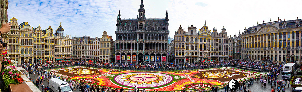 Pananoma of flower carpet in Brussels.