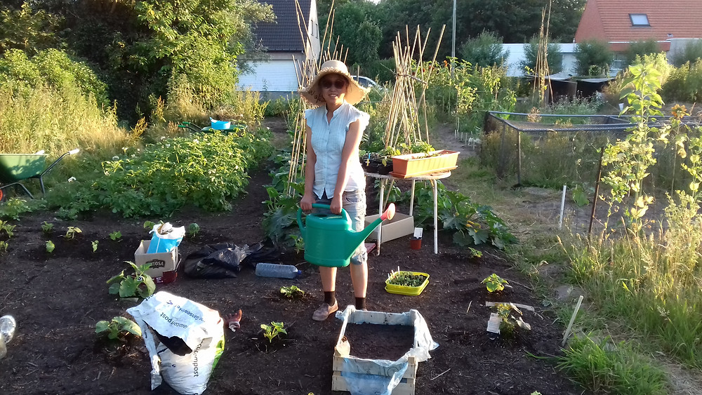 Me giving water to thirsty plants on a sunny hot July evening, we didn't have any rain in June and July.