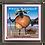 """Thumbnail: """"Brebis gorneau""""  Magnet"""