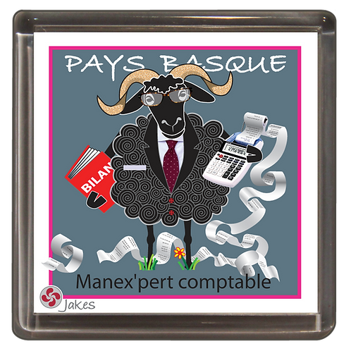 """Manex'pert comptable""  Magnet"
