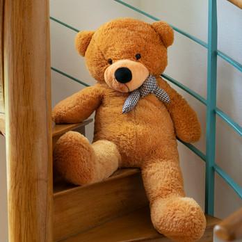 Wander-Teddy
