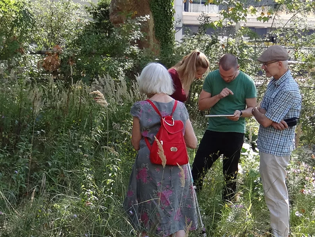 Citizen Science Checklist: How to find and keep volunteers collaborating with you