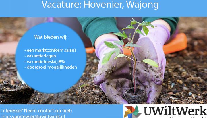 Hovenier, Wajong