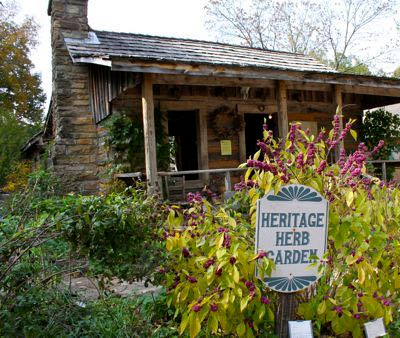 Ozark Folk Herbalism Cultural Q&A