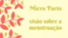 micro parto.png