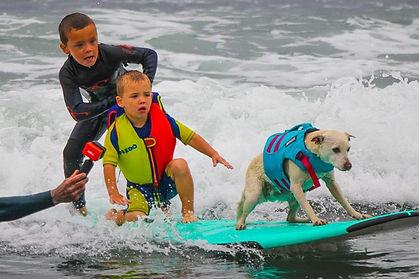 SurfingWithSugar.jpg