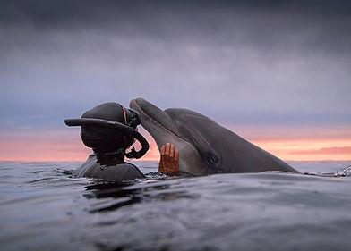 The-Sea-to-Me.jpg