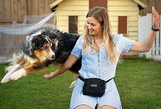 Dog-Date.jpg
