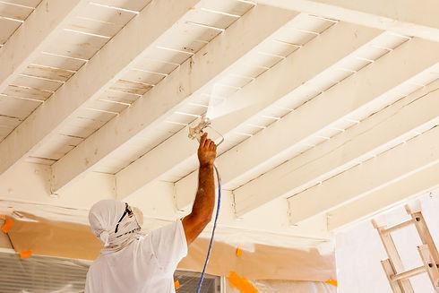 Professional House Painter Wearing Facia
