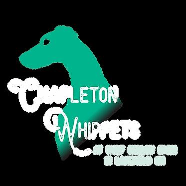ChapletonLogos-mint_Artboard 16_Artboard