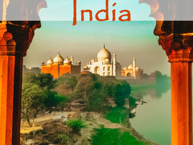 12 books to help you Armchair Travel to India