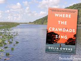 Where the Crawdads Sing: A young woman survives alone in the marshes of N Carolina