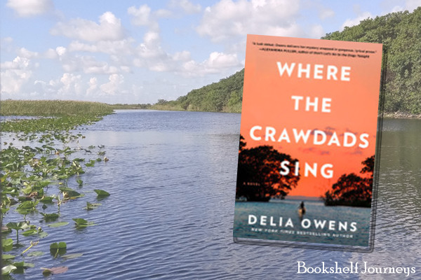 Book cover for Where the Crawdads Sing over Everglades photo by Terrie Purkey