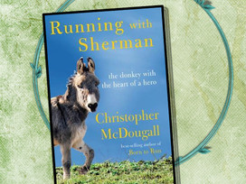 Racing with donkeys - doesn't everyone? Running With Sherman is a delightful nonfiction story!
