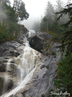 Shannon Falls, BC, Canada photo by Terrie Purkey