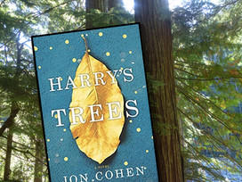 Heartbreaking. Heartwarming. Grief and Loss. Love and discovery. Harry's Trees by Jon Cohen