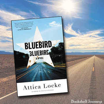 Bluebird Bluebird book cover over highway image