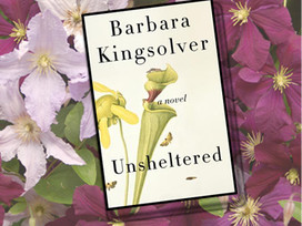 Is Kingsolver too political in this novel, Unsheltered?