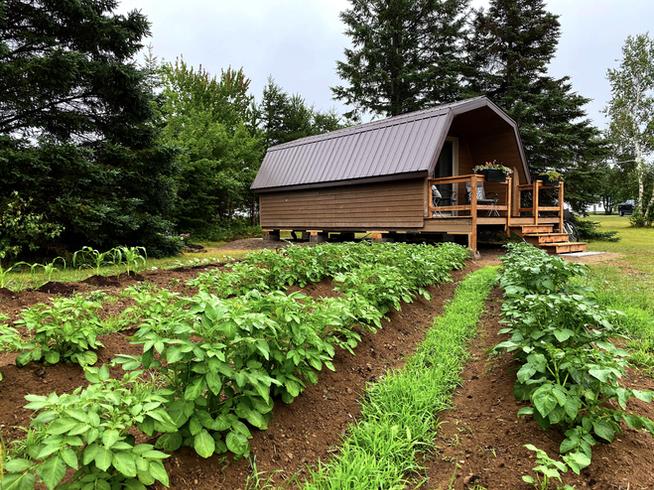 Cabin & garden
