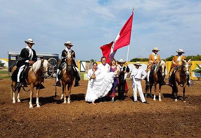 Paso Horses.jpg