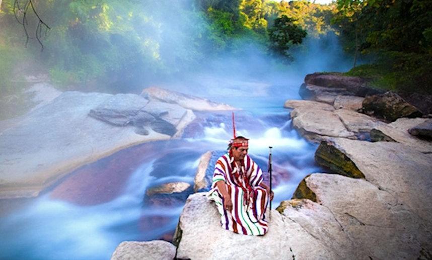 10 DAY Medicinal Plant Journey - RAINFOREST OF PERU