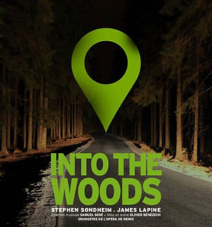 Into the woods affiche.jpg