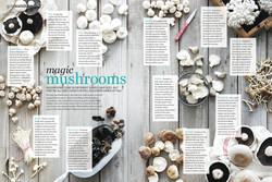 good health mushrooms.jpg