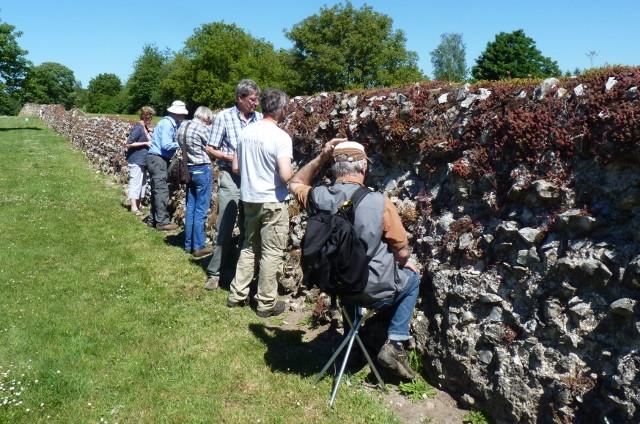 Foto 1: Lichenologen aan het werk