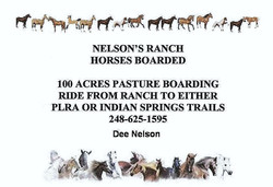 Nelson's Ranch