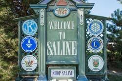 Saline Services