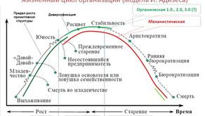 Автоматизация на разных этапах жизненного цикла компании