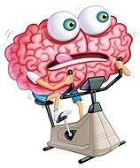 אימון הוח, אימון המוח בעברית, שיפור זיכרון, תרגילי זיכרון, חדר כושר למוח