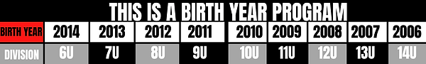 THIS IS A BIRTH YEAR PROGRAM.png