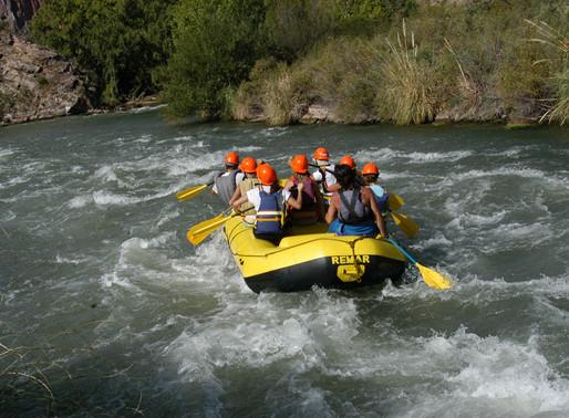 Corona-crisis leadership: Crossing the River of Rapid Transition