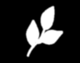 JB Leaf Logo.png