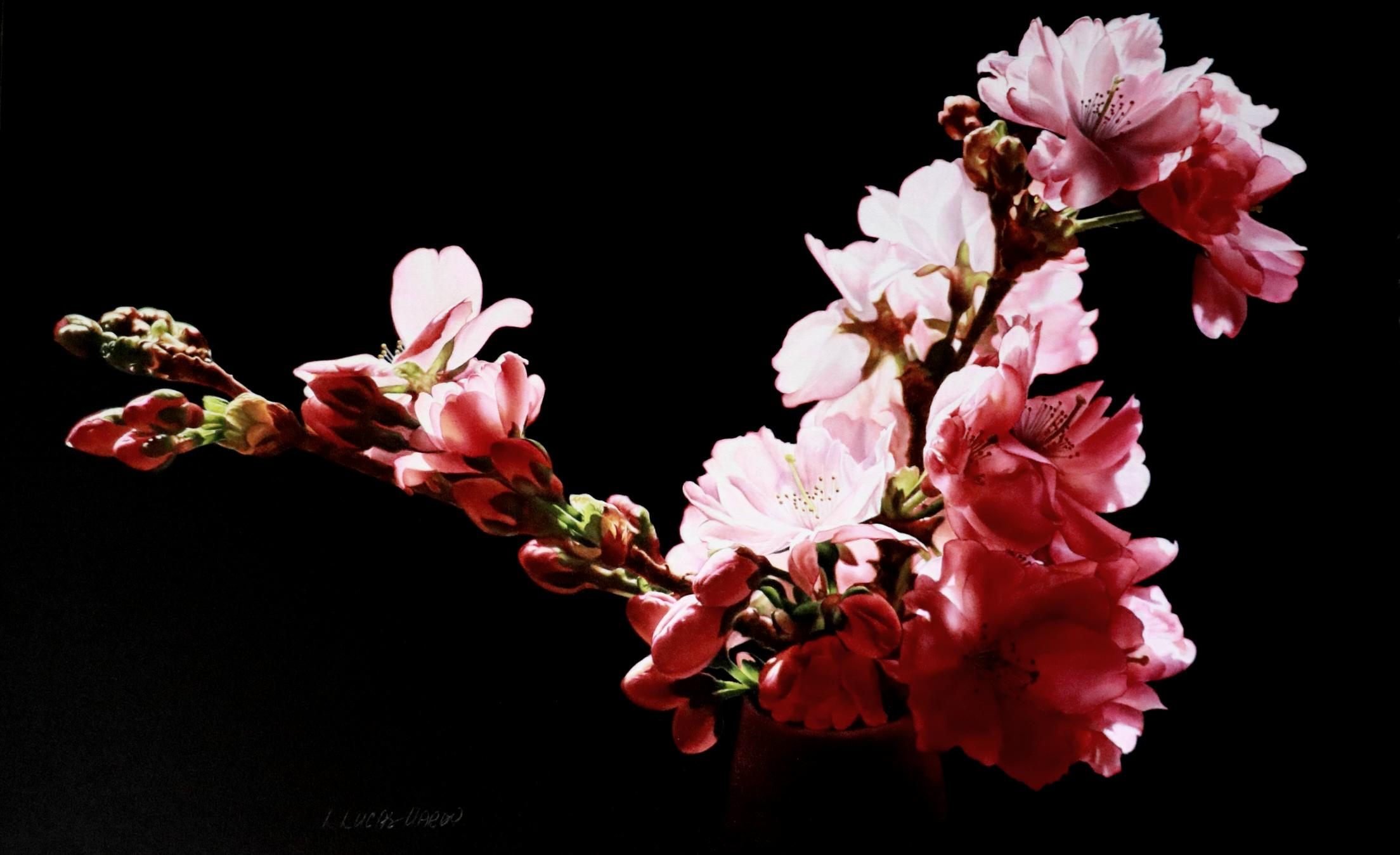 A Sweet Fragrance Filling the Air