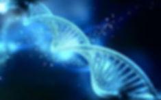 Image ADN1.jpg