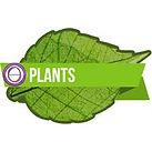 Logo Plant seminar.jpg
