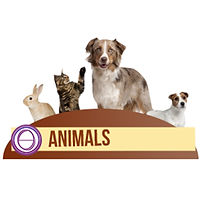 Logo Animals.jpg