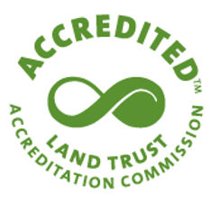accreditation seal.jpg