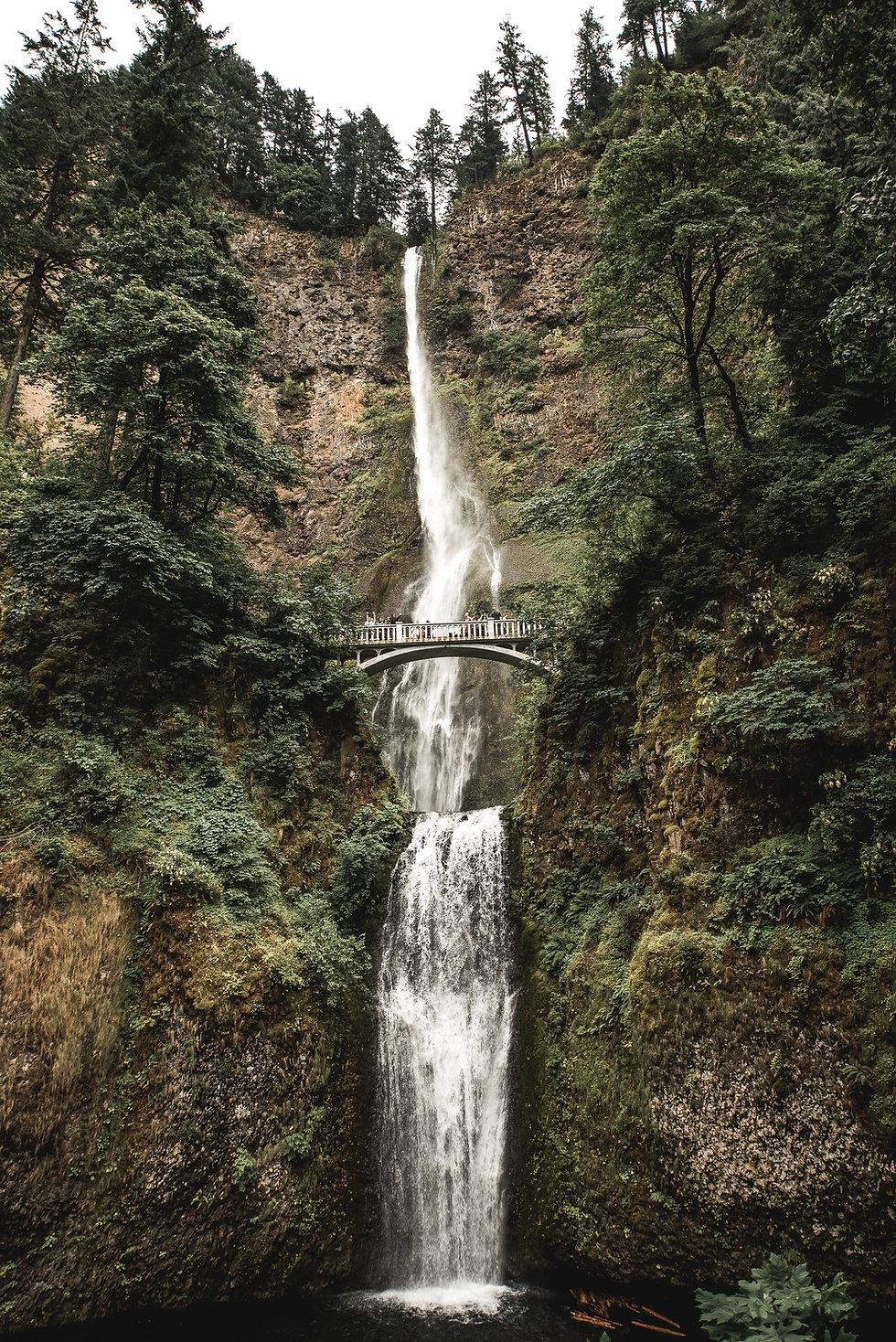 Puente sobre la cascada