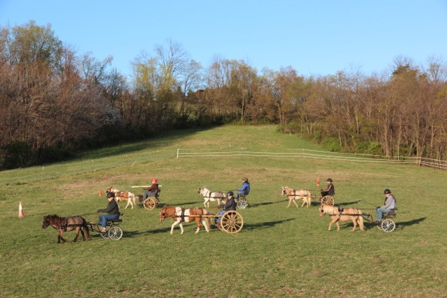 charming-creek-farm-pony-tales-- (2).jpe
