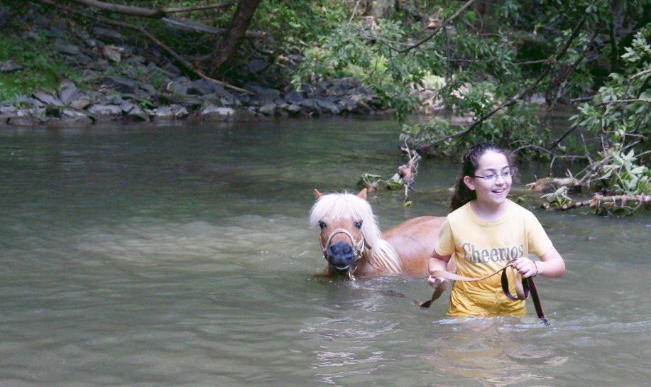 charming-creek-farm-pony-tales13.jpg