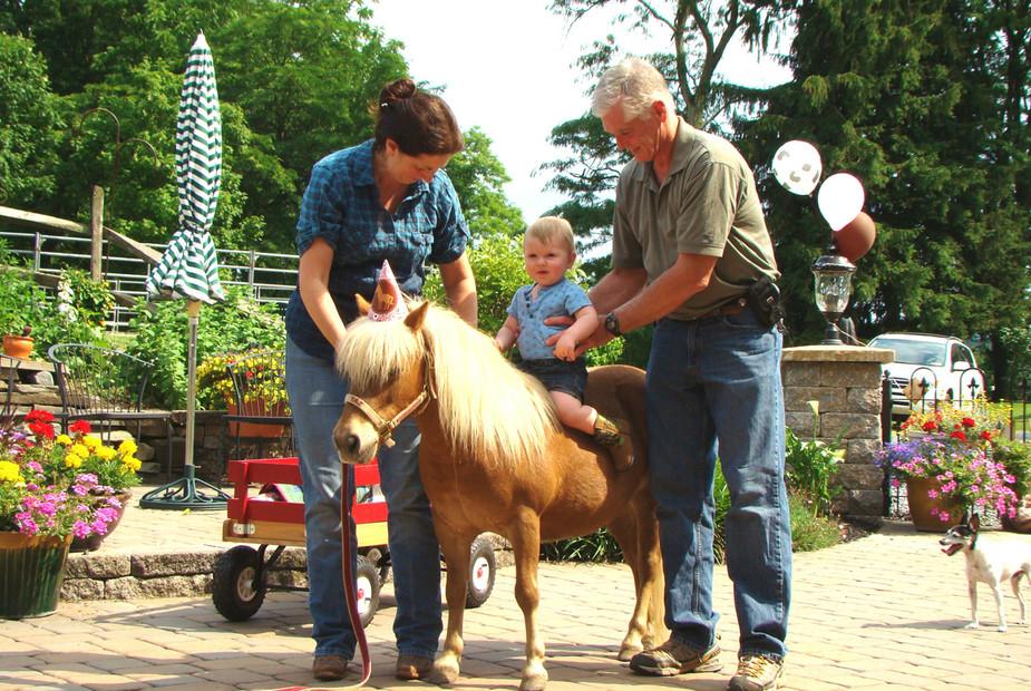 party-charming-creek-farm-pony-tales43.j