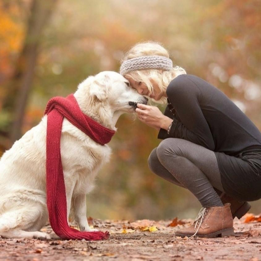 💘🍂Passeggiata nel Tunnel dell'amore&Bau Aperitivo in collina per cani e proprietari🐾🍂