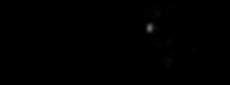 Incentive logo transparent.png