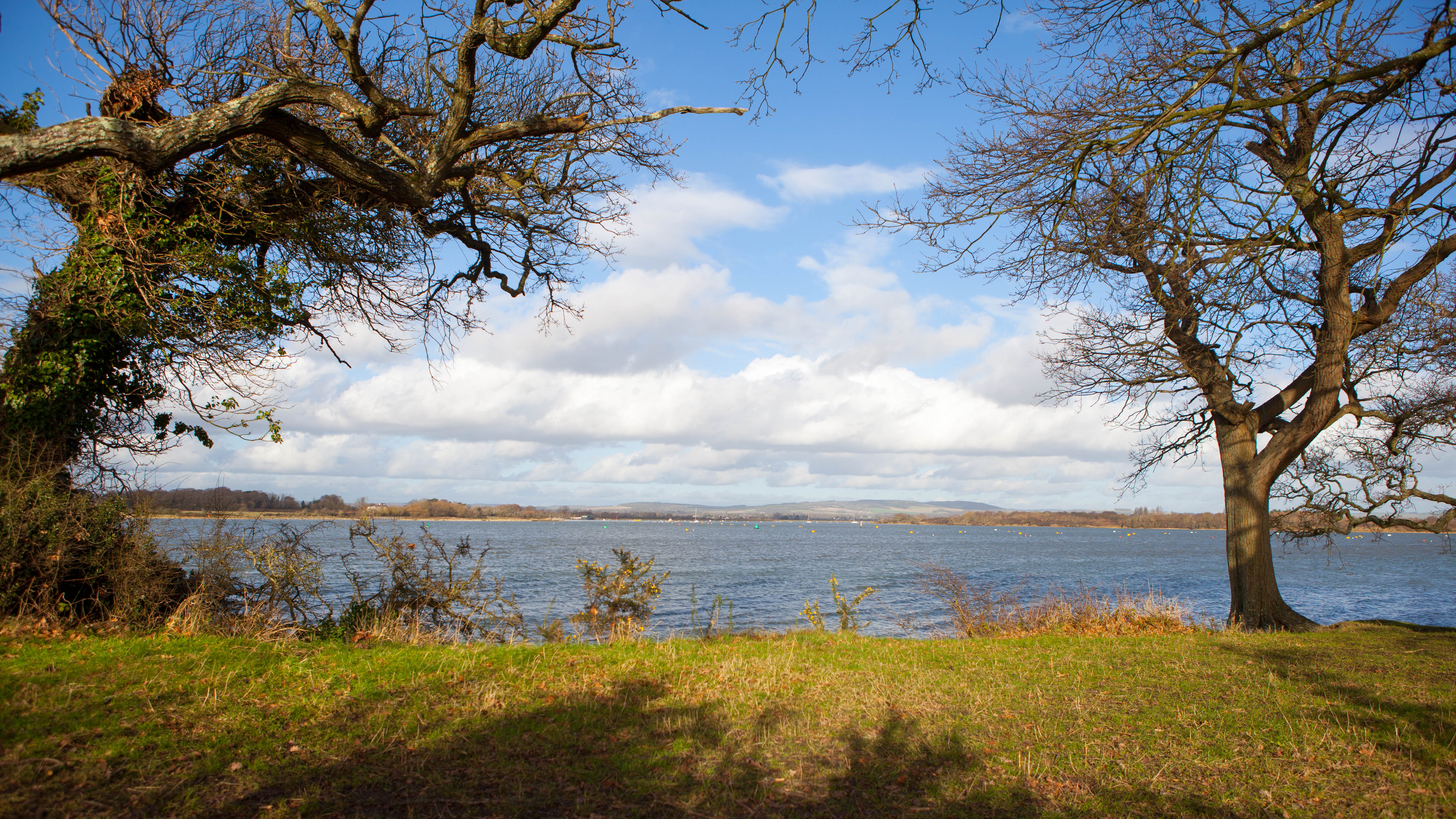 Bosham Views