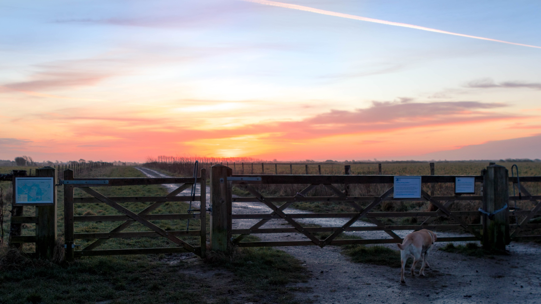 Gated sunrise