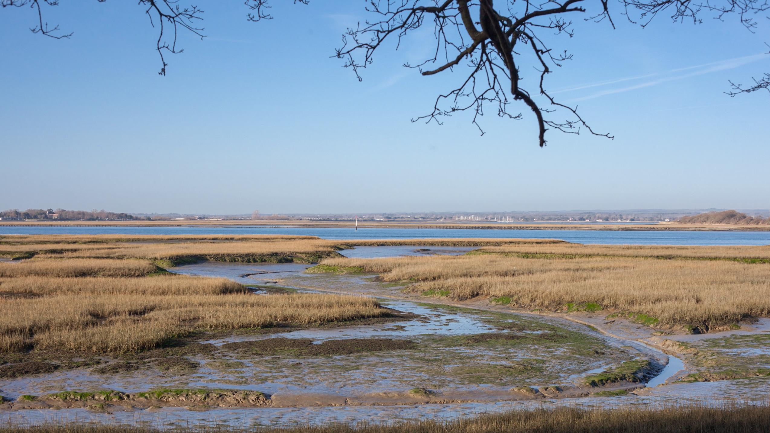 Low tide views