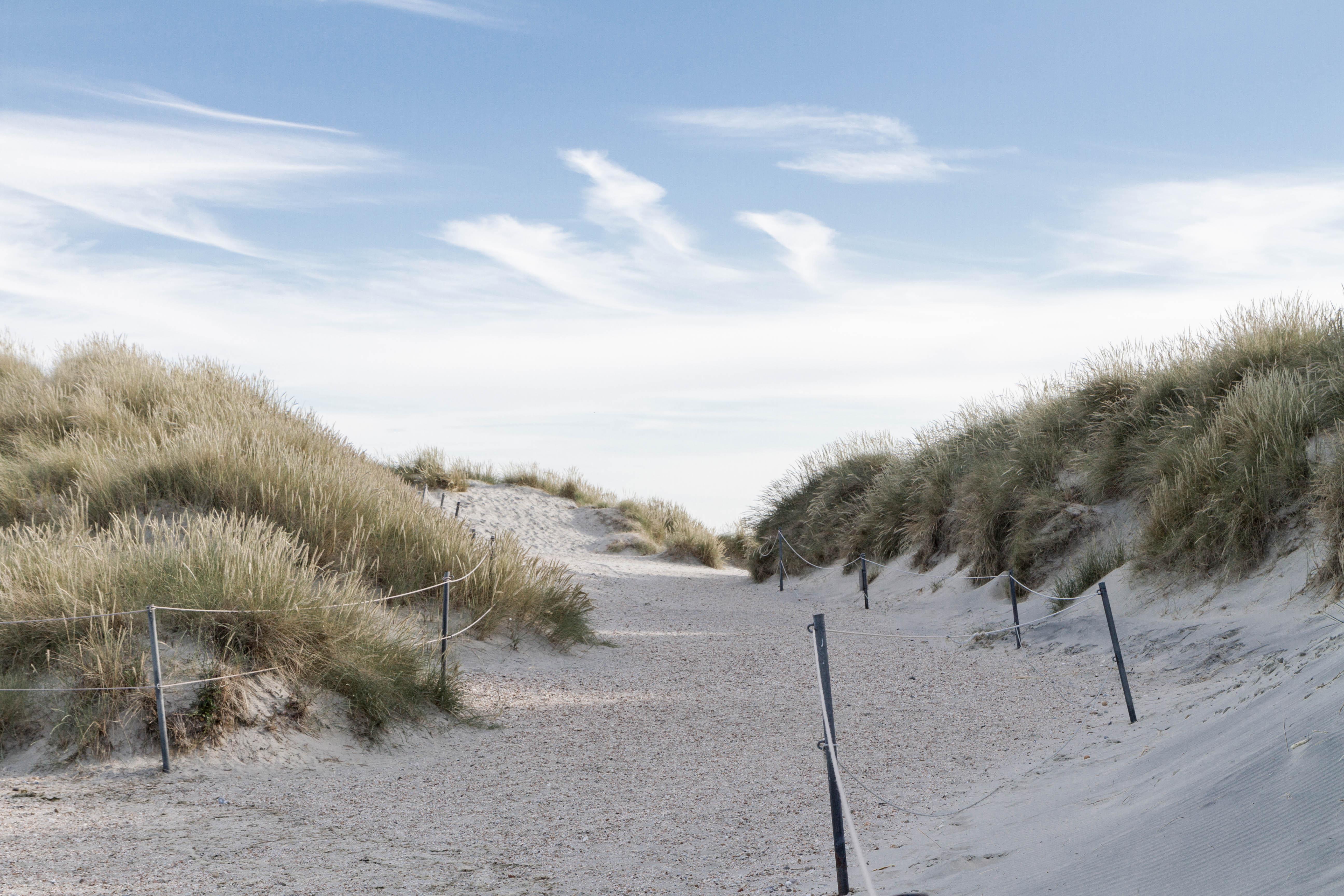 West Wittering Sand Dunes